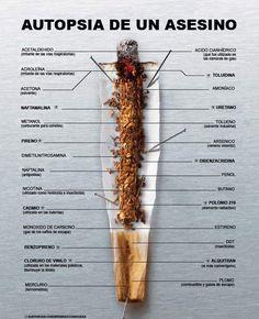 SAIKU ALTERNATIVO: DESINTOXICACIÓN DE LOS PULMONES PARA FUMADORES.