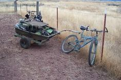 decoy trailer behind bike