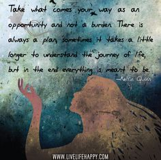 Take what comes your way as an opportunity and not a burden. There is always a plan, sometimes it takes a little longer to understand the journey of life, but in the end everything is meant to be.