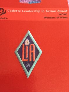 Leader in action badge for cadettes performing the wow journey for brownies Wow Journey, Wow Products, Porsche Logo, Girl Scouts, Brownies, Leadership, Badge, Action, Cake Brownies