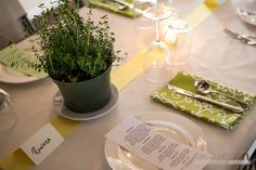 Love this tablescape! Thyme centerpieces from the garden!  Button's Creperie hosts first annual Farm to Table event at the Trenton Farmers Market. © Great Heights Photo
