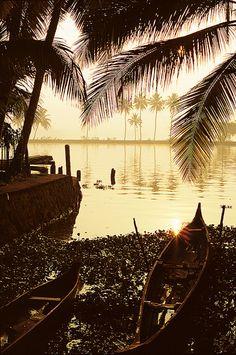 Sunrise along the Backwaters of Kerala