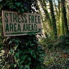 STRESS FREE AREA