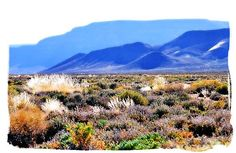 Tankwa Karoo National Park,...  Colourful autumn morning in the Tankwa Karoo