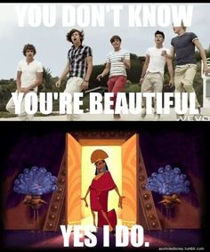 """""""You don't know you're beautiful."""" -One Direction """"Yes I do."""" -Emperor Kuzco"""