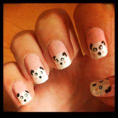 Panda bears