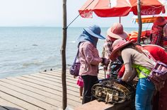 eat lots of sweet crab at the carb market in Kep, Cambodia!