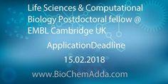 Life Sciences & Computational Biology Postdoctoral fellow @ EMBL Cambridge UK