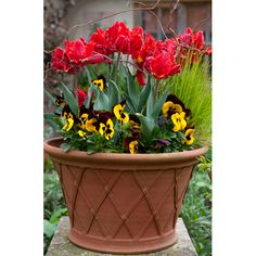 Basket Planter - Inspired by Elizabethan engravings, these pots are first hand thrown. The widest of our basket flowerpots, this pot is ideal for more voluminous plantings being relatively tall and broad.