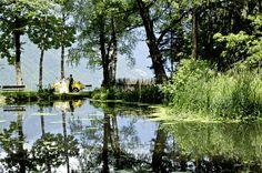 www.derwaldhof.it