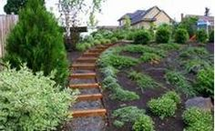 Gone Gardening: How to Landscape a Hill