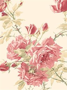 Check out this wallpaper Pattern Number: CG28837 from @Janet Russell-Snider Blinds and Wallpaper � decorate those walls!