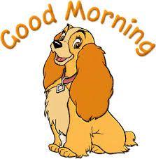 Image result for good morning gifs Good Morning Gif Funny, Good Morning Animated Images, Good Morning Cartoon, Good Morning Animation, Good Morning Funny, Good Morning Picture, Good Morning Messages, Good Morning Good Night, Morning Pictures