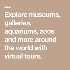 Explore museums, galleries, aquariums, zoos and more around the world with virtual tours.