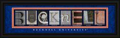 Bucknell University Officially Licensed Framed Letter Art