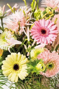 Close-up of a colourful gerbera bouquet #pinkgerberas #whitegerberas #inspiration #floral #flower #colouredbygerbera #dutchgerbera
