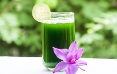 Difficulty getting up in the morning? Suffer from depression or anxiety? You might have adrenal fatigue. Thankfully, this coconut celery cucumber juice has the ability to help heal your symptoms and get you back on track. Cucumber Juice Benefits, Juicing Benefits, Leiden, Colon Cleanse Drinks, Adrenal Fatigue Symptoms, Detox Juice Recipes, Juice Beauty, Juice Diet, Healthy Juices