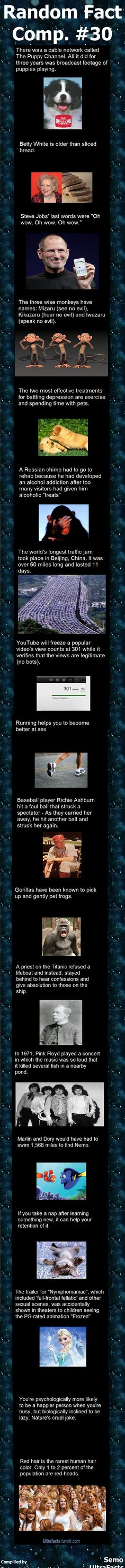 Random Fact Comp 30  // funny pictures - funny photos - funny images - funny pics - funny quotes - #lol #humor #funnypictures