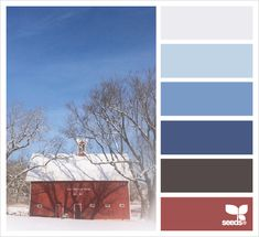 snowy hues - love the pop of washed out red against the blues and whites - a classic nautical palette in winter Blue Colour Palette, Colour Schemes, Color Combos, Color Patterns, Design Seeds, Color Blending, World Of Color, Color Swatches, Color Theory