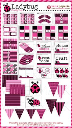 Pink LadyBug Birthday Party Package Personalized by venspaperie