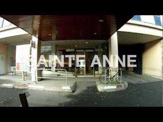 FAUVE ≠ SAINTE ANNE
