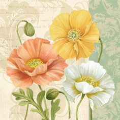 ❤ =^..^= ❤     Pastel Poppies Multi II | Pamela Gladding