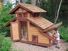 fancy chicken coops! cats-and-chickens