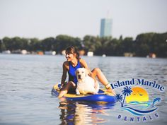 No dog enjoys being left alone at home — especially when you leave for the beach without them. If you'd like to go paddleboarding with your four-legged friend, here are six of the most essential tips and guidelines to keep in mind when riding the waves together atop a paddleboard. This is the one time a wet dog is a good one. #PaddleboardingGuide #PetOverboard #WetDog Kayak Rentals, Kayak Adventures, Left Alone, Just Relax, Heaven On Earth, Paddle Boarding, Four Legged, Dog Life, Kayaking