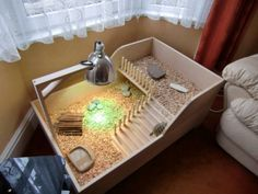 tortoise enclosure indoor - Google Search