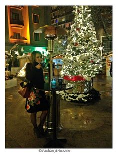 Christmas market at Athenee Palace Hilton ♥ Aristocats, Palace, Christmas Tree, Marketing, Holiday Decor, Home Decor, Fashion, Teal Christmas Tree, Moda