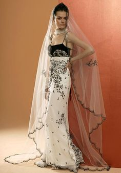 Thats awesome dress and incredible veil