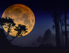 Full Moons have always seemed to be magical. Supposedly its one of the strongest time for magic users. Either way, even the police or hospitals, say there is more activity during a full moon...
