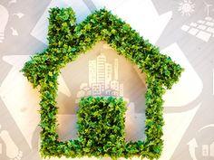 Poupar dinheiro e o planeta: Goldenergy oferece linha de energia 100% verde
