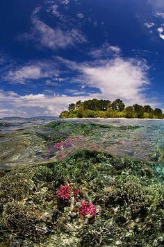 Raja Ampat, Papua, #Indonesia