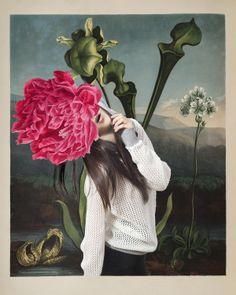 Naturalis Historia   Carmen Julia   Martina Giammaria #photography   Dossier Journal 10 Fall 2012 #mixed_media #collage