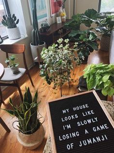 Gathered half of our plants for watering day : IndoorGarden You are in the right place about house plants decor houseplant Here Indoor Garden, Garden Plants, Indoor Plants, Water Day, Plants Quotes, Plant Aesthetic, Room With Plants, Plantation, My New Room
