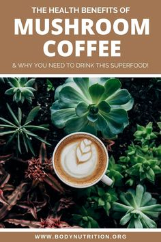 All about mushroom coffee and why you need to drink this delicious superfood. This post will answer all your questions about drinking mushroom coffee and the health benefits you get from every single sip. Plus the best mushroom coffee products! #mushroomcoffee #superfood #health Health Benefits Of Mushrooms, Mushroom Benefits, Healthy Meal Prep, Healthy Breakfast Recipes, Healthy Eating, Health And Wellness, Health Tips, Best Superfoods, Maitake Mushroom