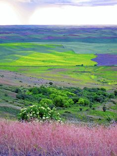 Hidden in Eastern Washington..Steptoe Butte...Hwy from Spokane to Pullman.