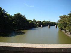 Cache River near Biscoe