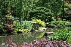 Japanese gardens, Gibbs Garden, Ball ground, Ga.
