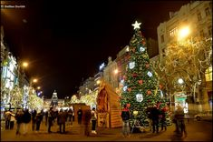 Christmas atmosphere of cities and towns in Czechia : Prague Prague, Scenery, Christmas Tree, Architecture, Holiday Decor, City, Places, Nature, December