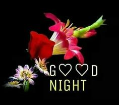 Beautiful Good Night Wishes Images Pics Wallpaper for Whatsapp - Good Morning Images Good Night Photo Images, Beautiful Good Night Images, Night Pictures, Morning Pictures, Good Morning Images, Good Night Greetings, Good Night Messages, Night Wishes, Good Night Quotes