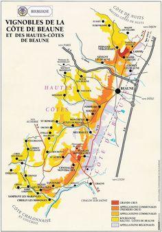 A la découverte de la Côte de Beaune, sur la route des vins #WineAndSpirits Vin France, France Map, Burgundy Wine Map, Cote De Beaune, Beaune Bourgogne, Wine Infographic, Infographics, French Wine Regions, Wine Vineyards
