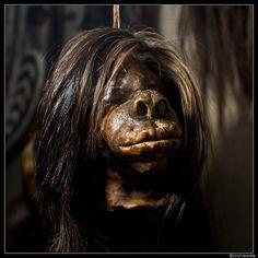Shrunken Heads @ Pitt Rivers Museum, Oxford