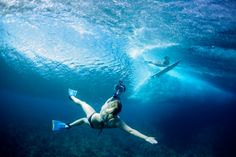Essential Underwater Photography Tips from Sarah Lee | The SmugMug Blog