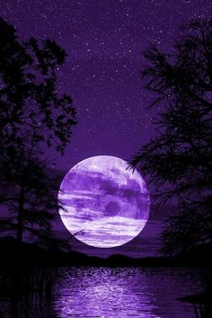 20 Beautiful Wallpapers for iPhone 4 Night Sky Wallpaper, Purple Wallpaper Iphone, Scenery Wallpaper, Dark Wallpaper, Galaxy Wallpaper, Wallpaper Backgrounds, Purple Backgrounds, Wallpaper Desktop, Disney Wallpaper