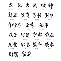 Beautiful Chinese Calligraphy of 20 words for a book by d'sun