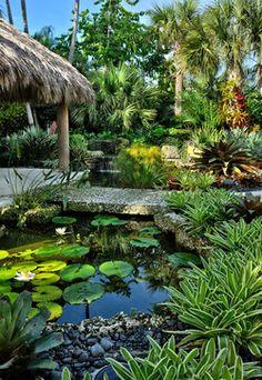 Tropical Garden Landscape Ideas Photograph driveway leadin