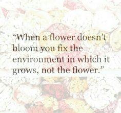 Quote self love