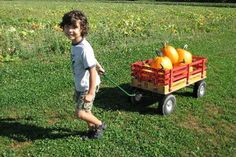 Fall Harvest Festival #Kids #Events